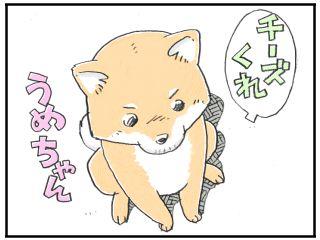 Ichiro26